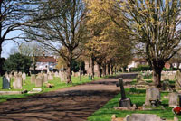"""Portslade cemetery with headstones both sides of a path"""