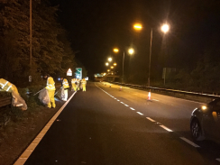 Council staff clean up A27
