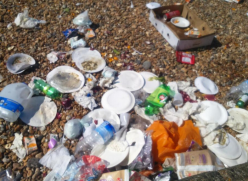 Waste and rubbish left on the beach