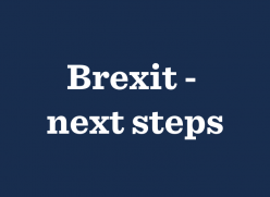 Brexit - next steps